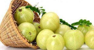 health-benefits-of-amlahealth-benefits-of-amla